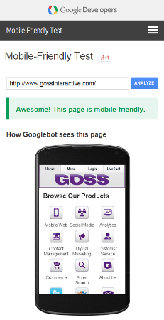 Google Mobile Friendly Test GOSS