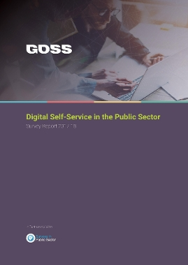 Public Sector organisations getting more realistic in bid to move services online